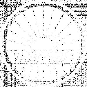 Westfield Chiptuning
